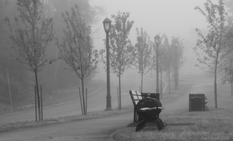Lily Lake ~ fog
