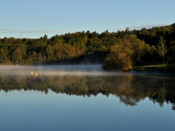 Lily Lake ~ morning mist