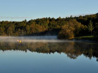 Lily Lake ~ morning mist