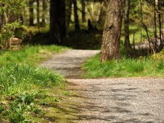 rockwood_path